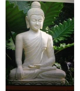 Outdoor Budhha
